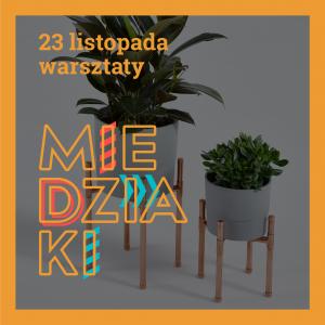 miedziaki_ok